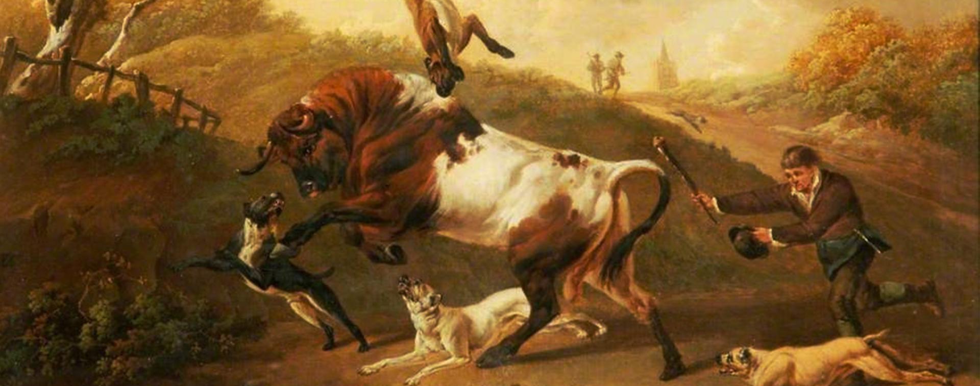 Bulldogs originais