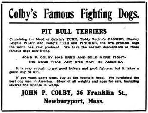 colby ad (1)