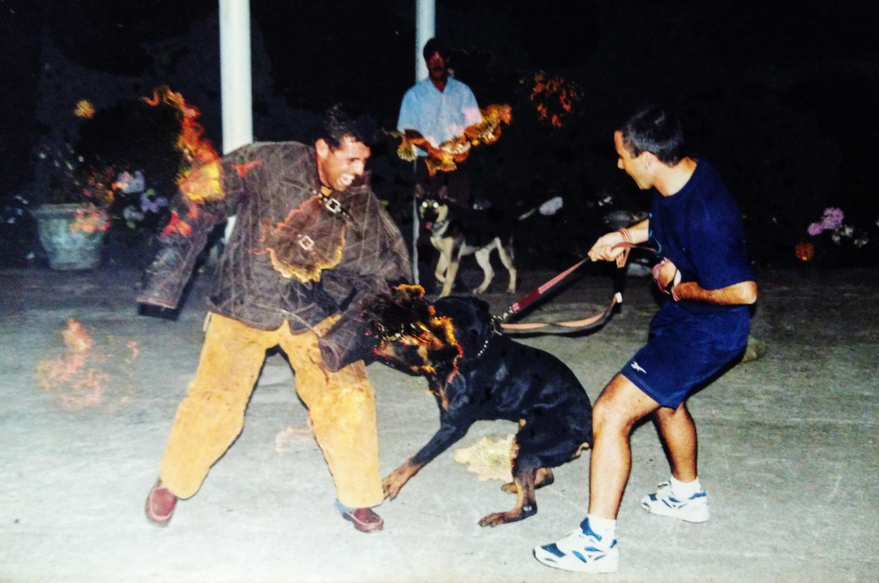 Jairo Teixeira faz figuração com Rottweiler