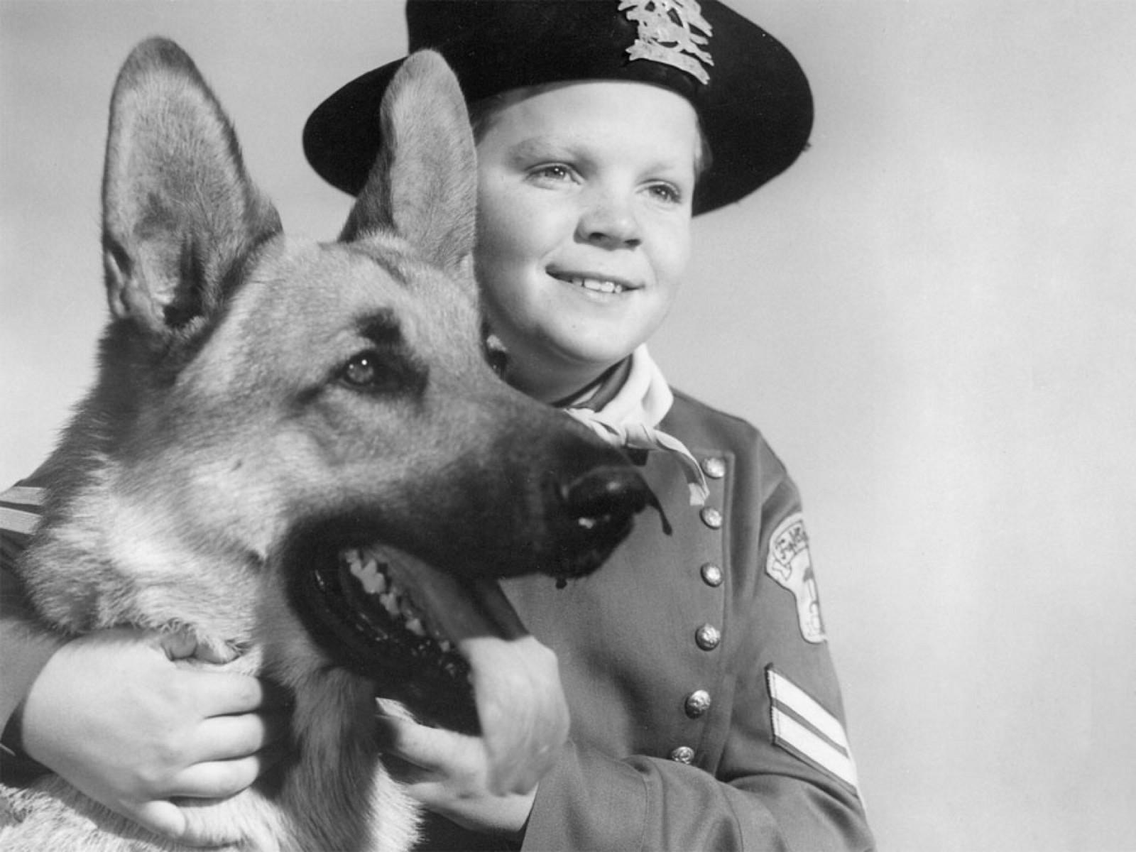 Rin Tin Tin com garoto