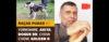 Raças Puras #2 – Yorkshire, Dogue Brasileiro, Akita, Chow Chow, Golden R. - Adestramento de cães e comportamento canino